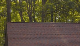Roofing Repair and Cleaning